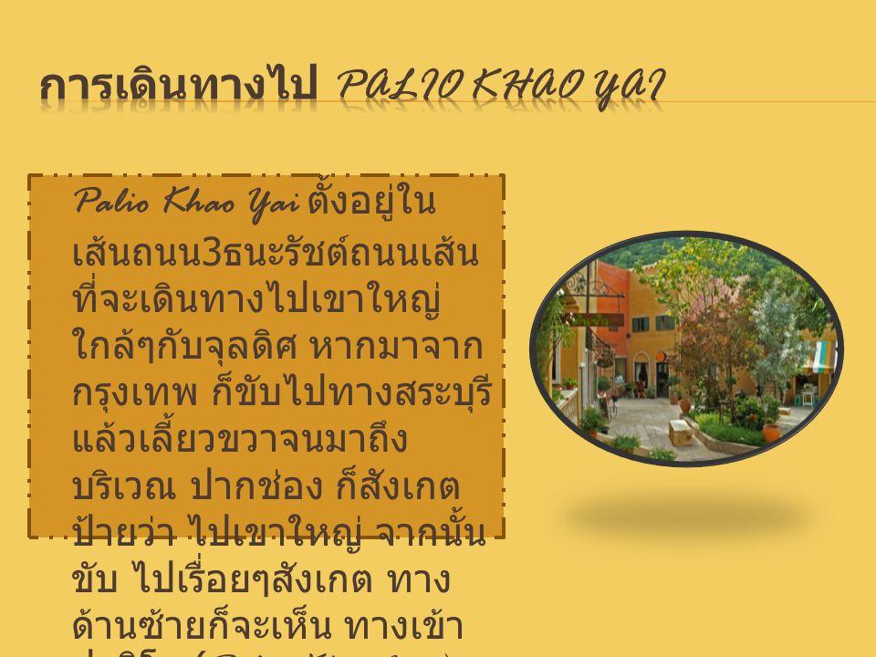 การเดินทางไป Palio Khao Yai
