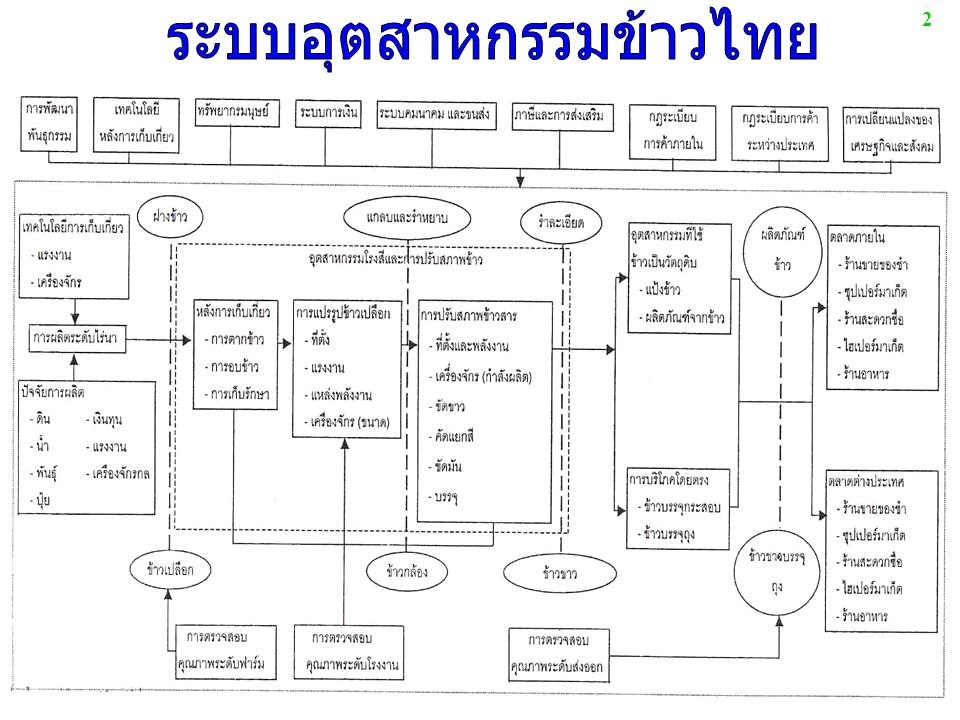 ระบบอุตสาหกรรมข้าวไทย