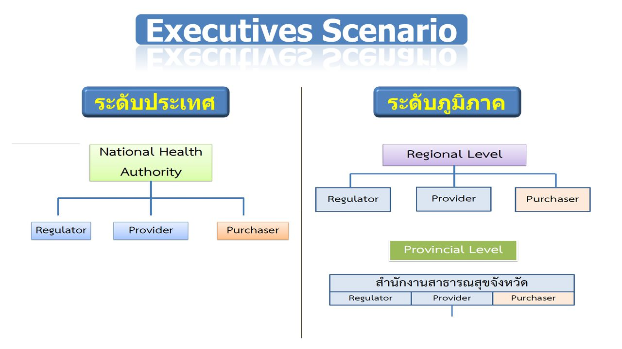 Executives Scenario ระดับประเทศ ระดับภูมิภาค