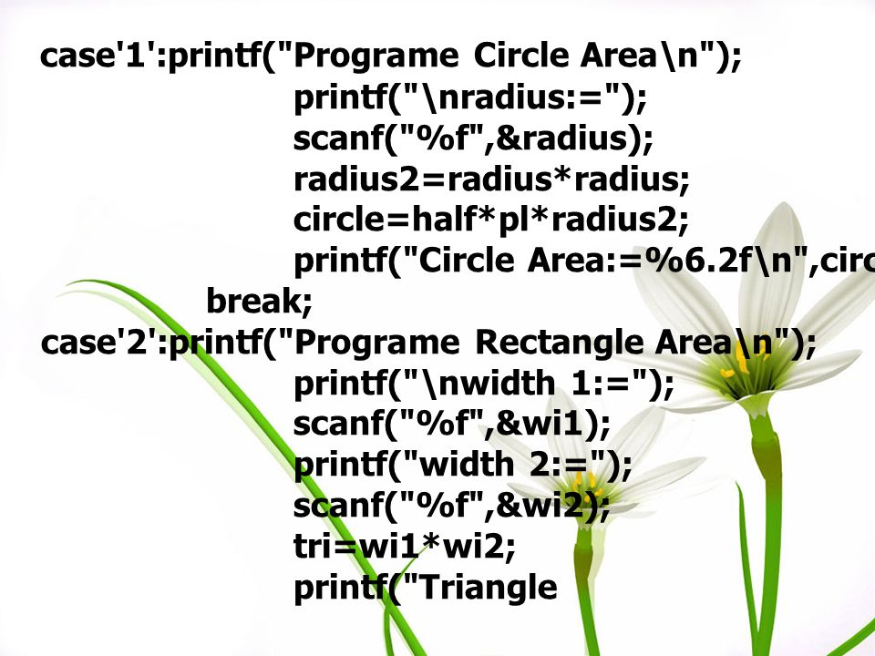 case 1 :printf( Programe Circle Area\n );