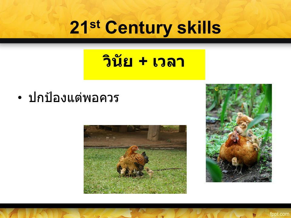 21st Century skills ปกป้องแต่พอควร วินัย + เวลา