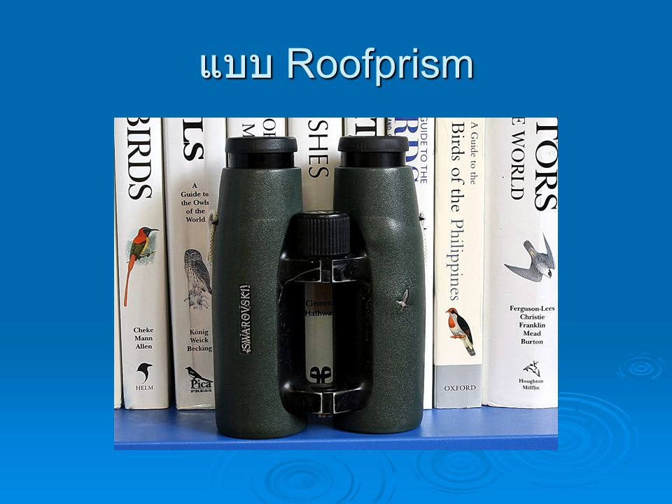 แบบ Roofprism