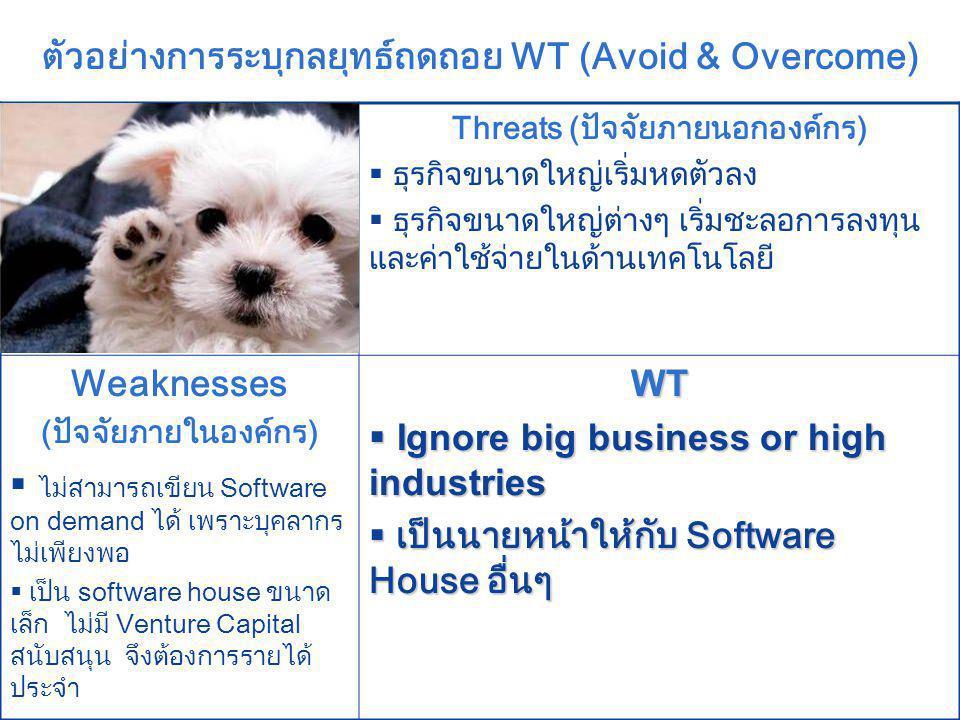 ตัวอย่างการระบุกลยุทธ์ถดถอย WT (Avoid & Overcome)