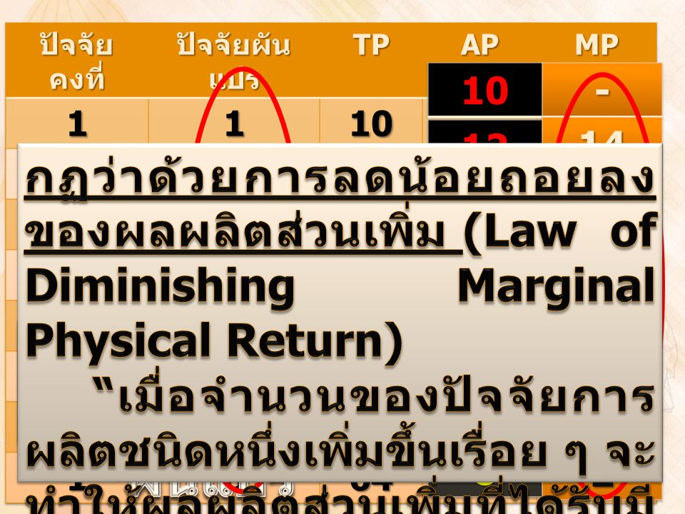 Marginal Product : MP Average Product : AP = TP / ปัจจัยผันแปร