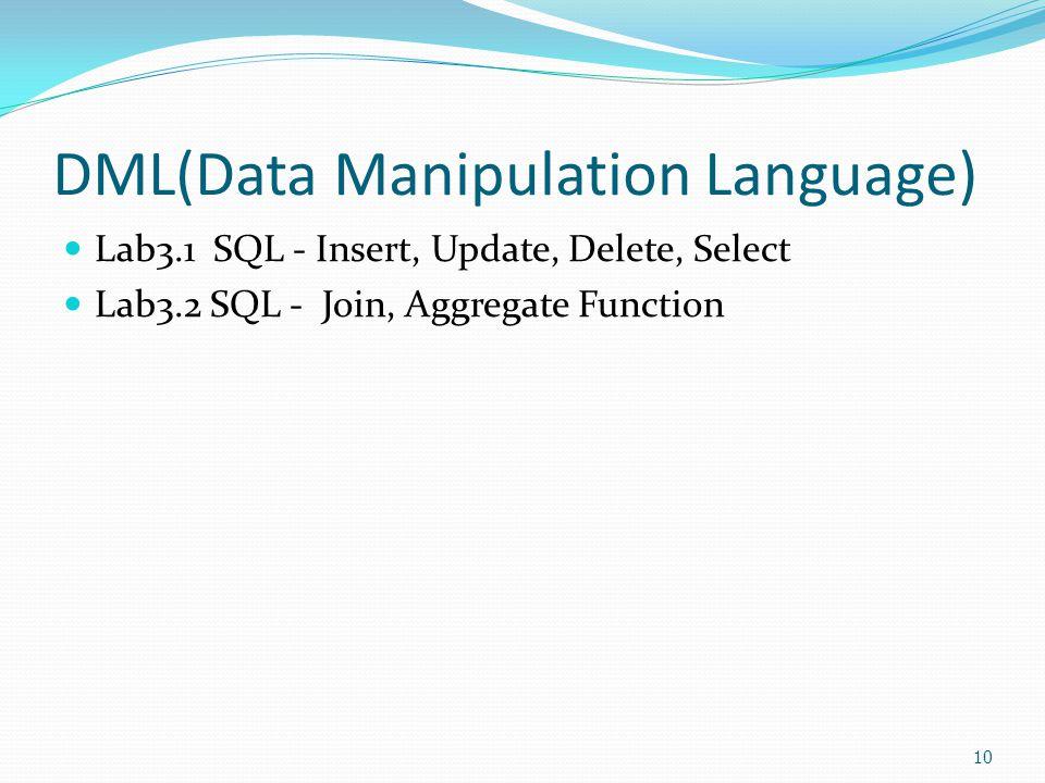 DML(Data Manipulation Language)