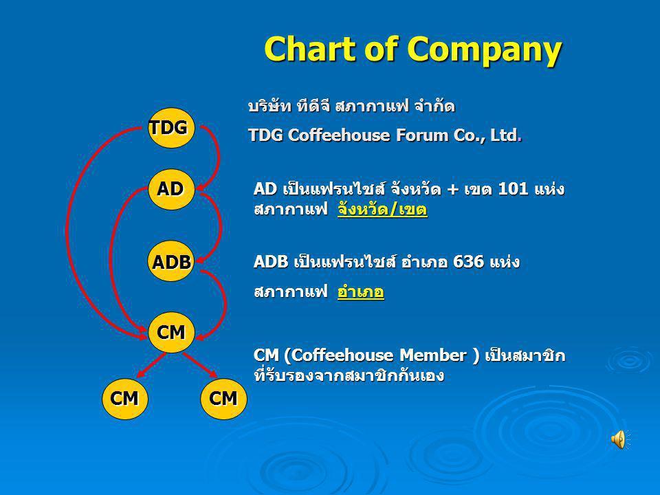 Chart of Company TDG AD ADB CM บริษัท ทีดีจี สภากาแฟ จำกัด