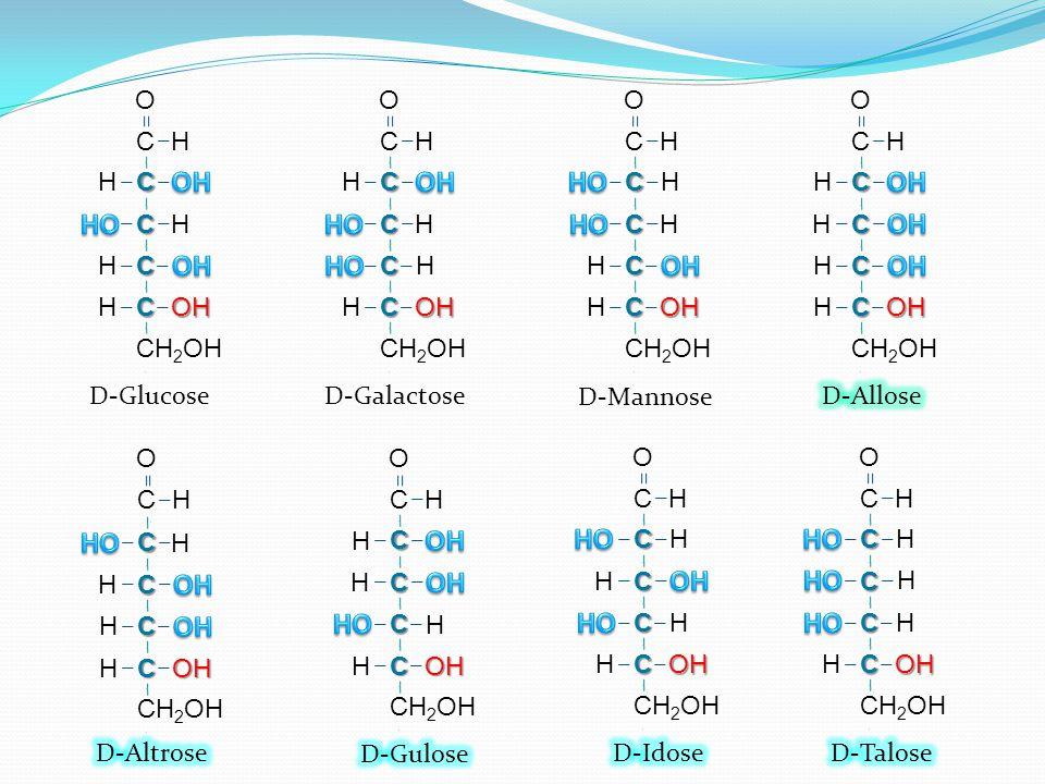 O C. OH. HO. H. CH2OH. O. D-Galactose. C. H. HO. CH2OH. O. OH. D-Mannose. C. OH. H.