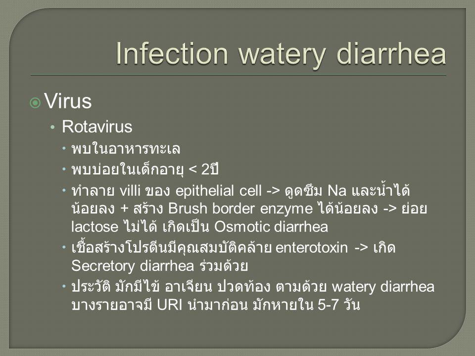 Infection watery diarrhea