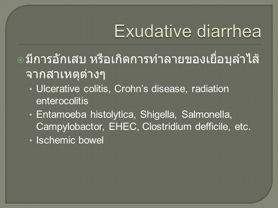 Exudative diarrhea มีการอักเสบ หรือเกิดการทำลายของเยื่อบุลำไส้จากสาเหตุต่างๆ. Ulcerative colitis, Crohn's disease, radiation enterocolitis.