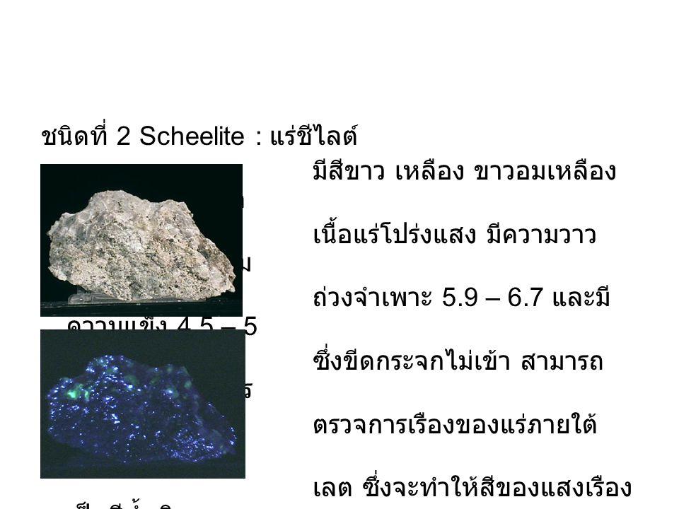 ชนิดที่ 2 Scheelite : แร่ชีไลต์