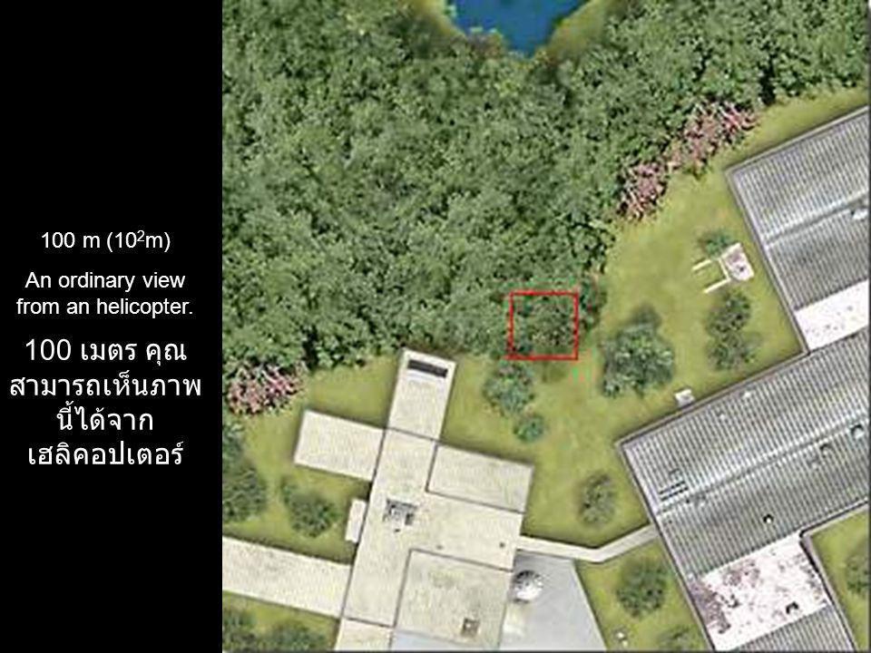 100 เมตร คุณ สามารถเห็นภาพนี้ได้ จากเฮลิคอปเตอร์