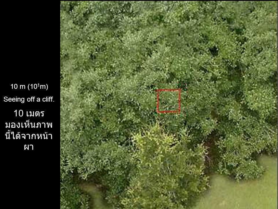 10 เมตร มองเห็น ภาพนี้ได้จากหน้าผา