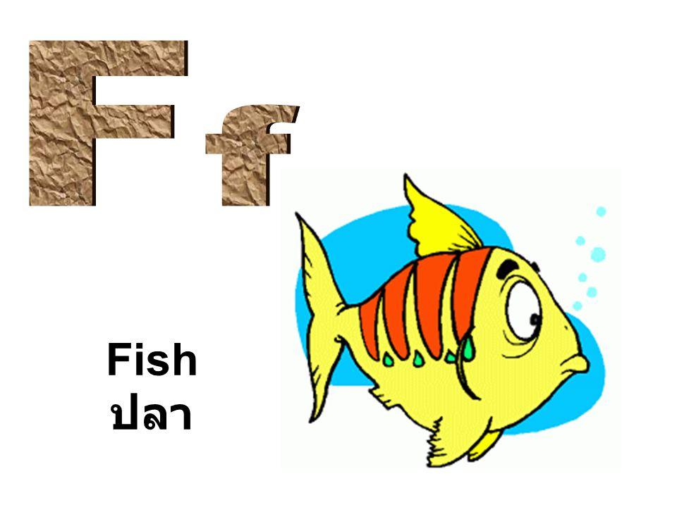 F f Fish ปลา