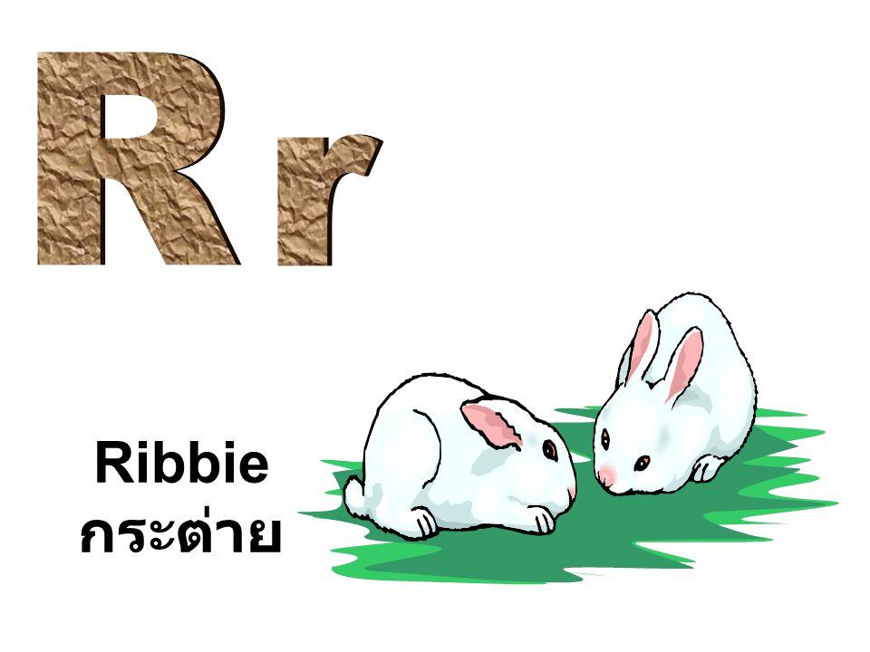 R r Ribbie กระต่าย
