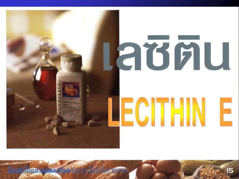 LECITHIN E
