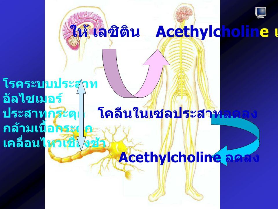 Acethylcholine เพิ่มขึ้น