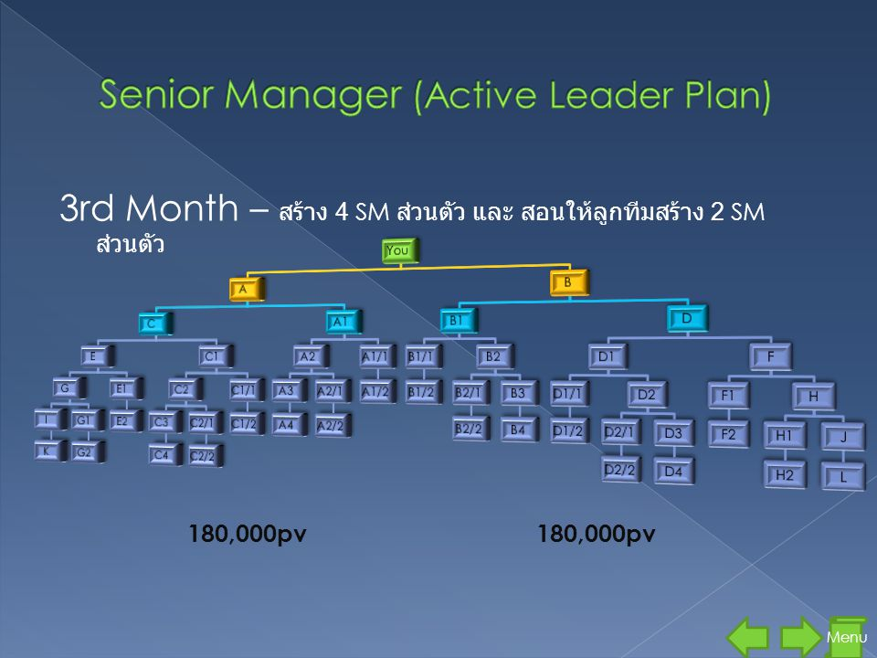 Senior Manager (Active Leader Plan)