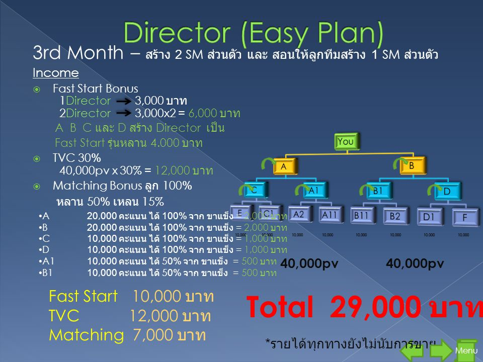 Total 29,000 บาท Director (Easy Plan)