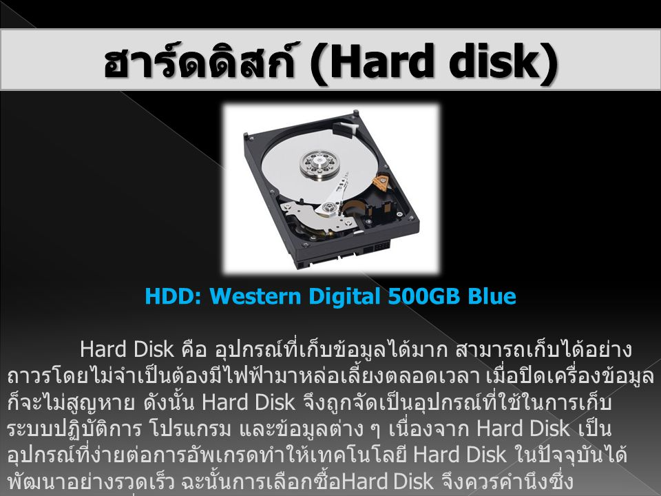 ฮาร์ดดิสก์ (Hard disk) HDD: Western Digital 500GB Blue