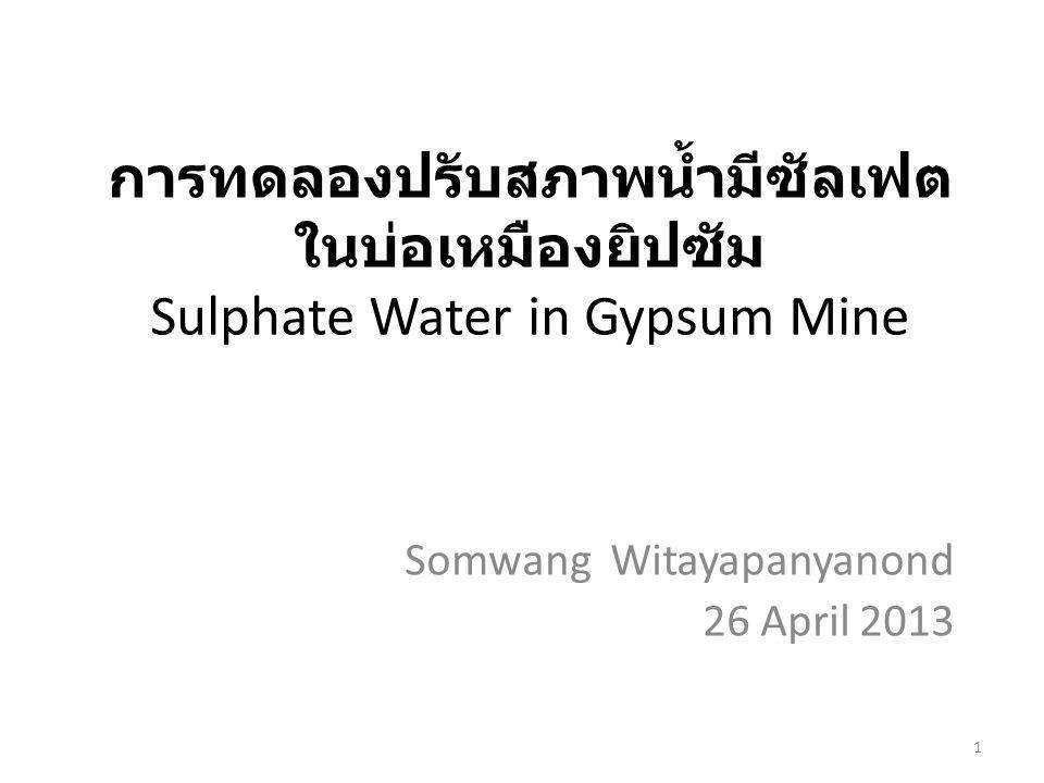 Somwang Witayapanyanond 26 April 2013