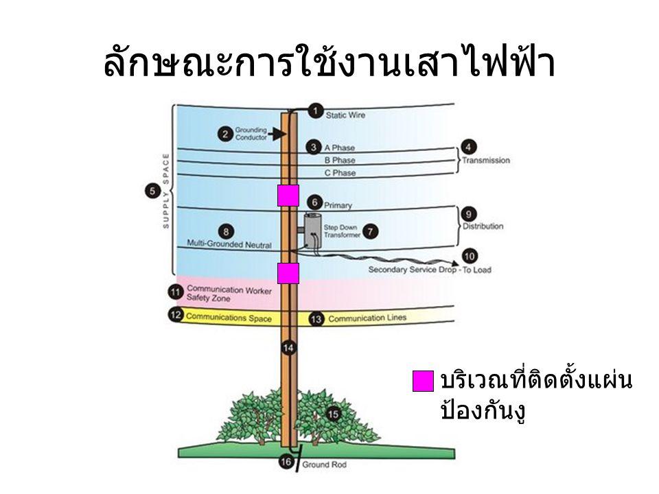 ลักษณะการใช้งานเสาไฟฟ้า