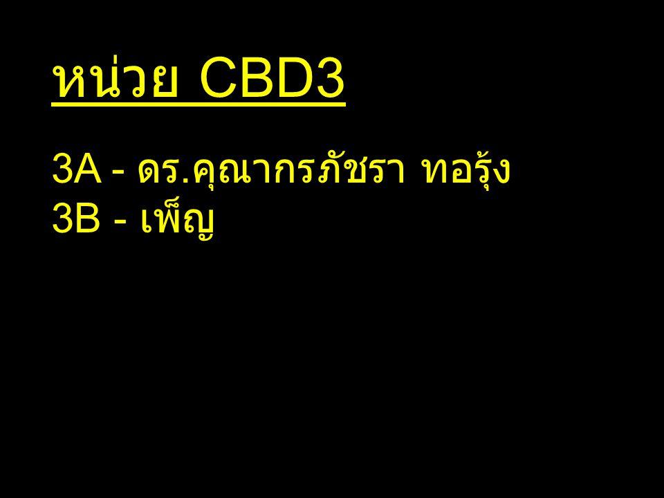 หน่วย CBD3 3A - ดร.คุณากร ภัชรา ทอรุ้ง 3B - เพ็ญ