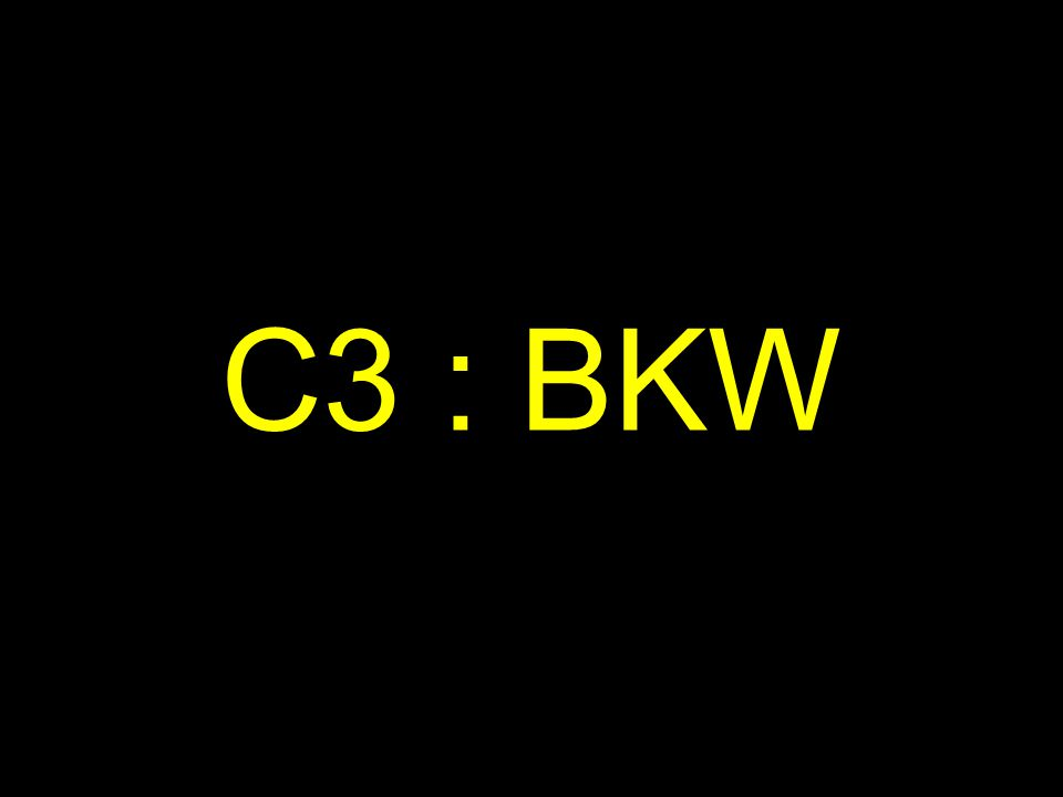 C3 : BKW