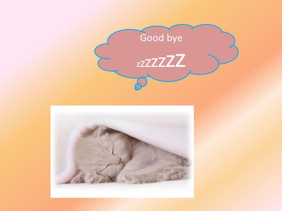 Good bye zzzzzzz