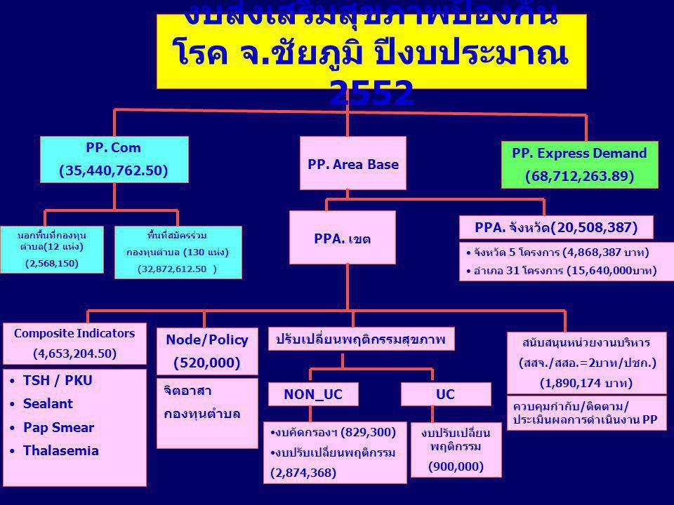 งบส่งเสริมสุขภาพป้องกันโรค จ.ชัยภูมิ ปีงบประมาณ 2552