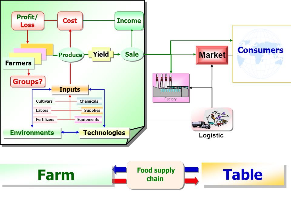 Table Farm Consumers Market Groups Profit/ Loss Cost Income Yield