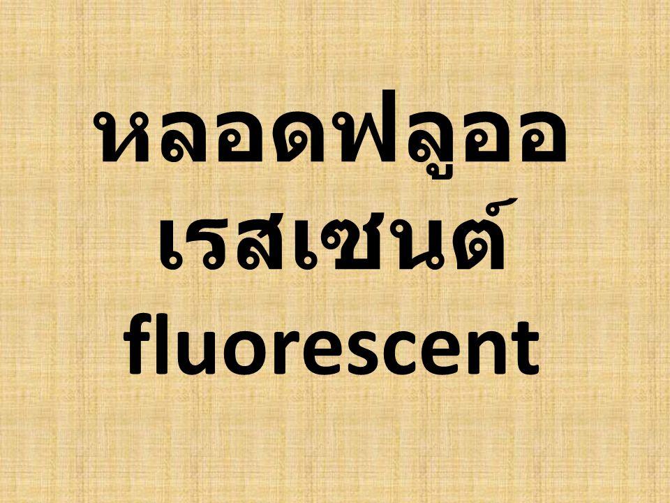 หลอดฟลูออเรสเซนต์ fluorescent