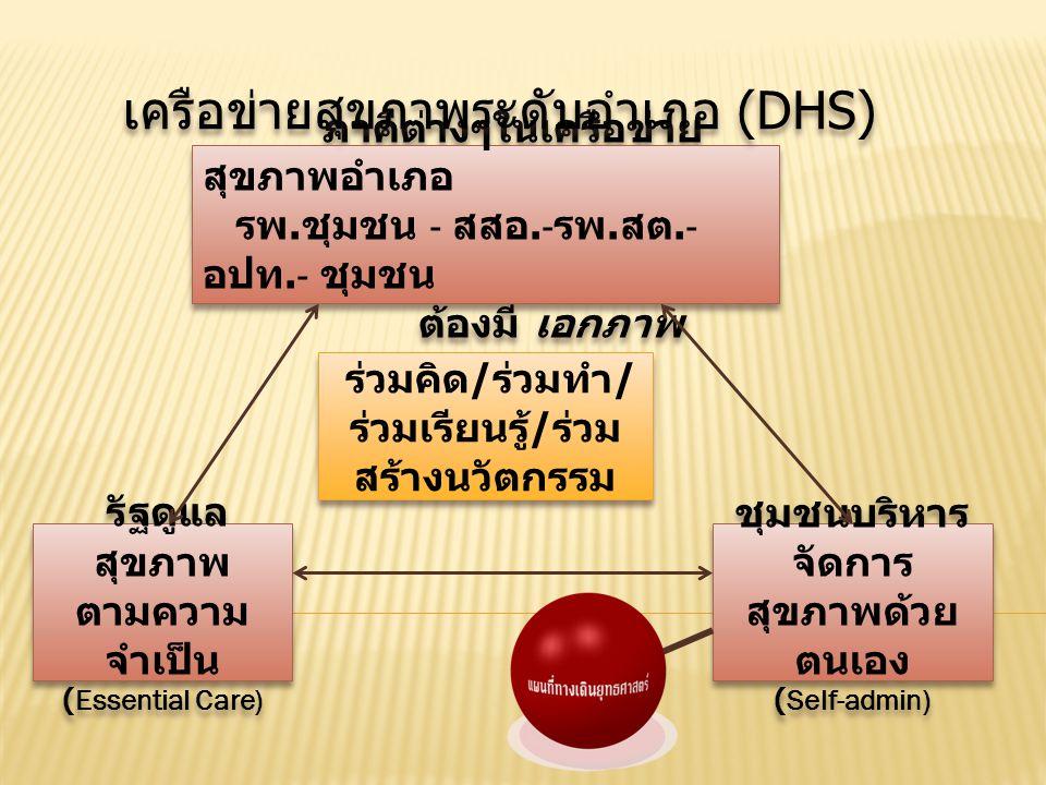 เครือข่ายสุขภาพระดับอำเภอ (DHS)