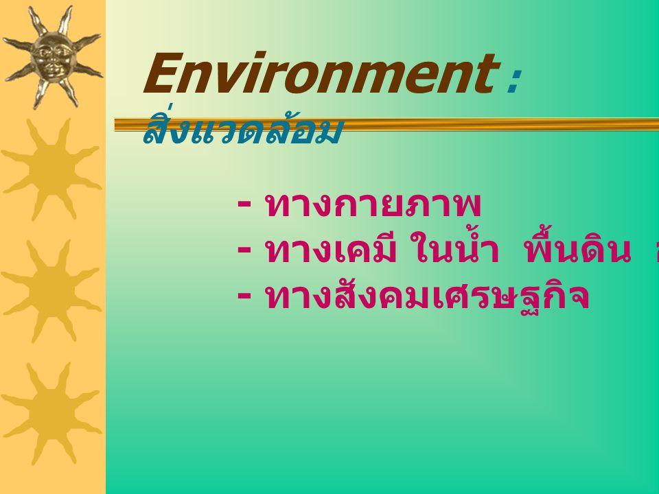 Environment : สิ่งแวดล้อม