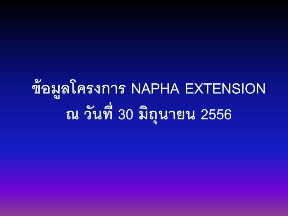 ข้อมูลโครงการ NAPHA EXTENSION