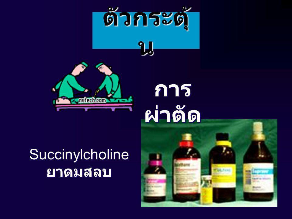 ตัวกระตุ้น การผ่าตัด Succinylcholine ยาดมสลบ