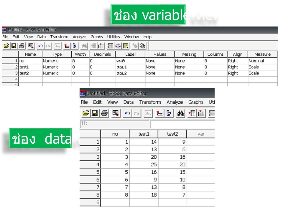 ช่อง variable view ช่อง data view