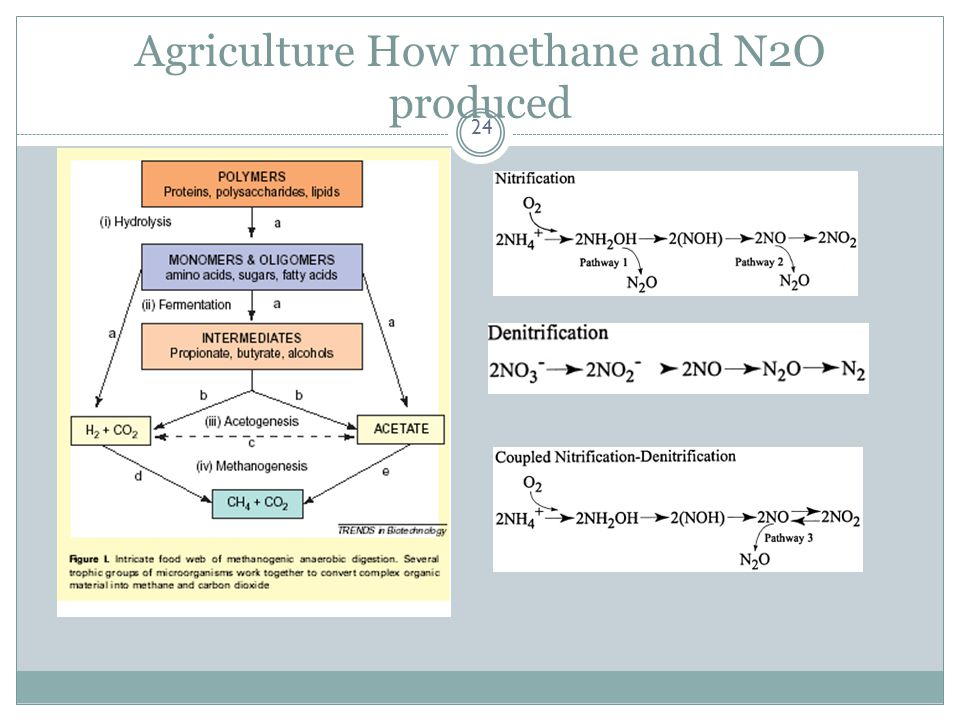 Agriculture How methane and N2O produced