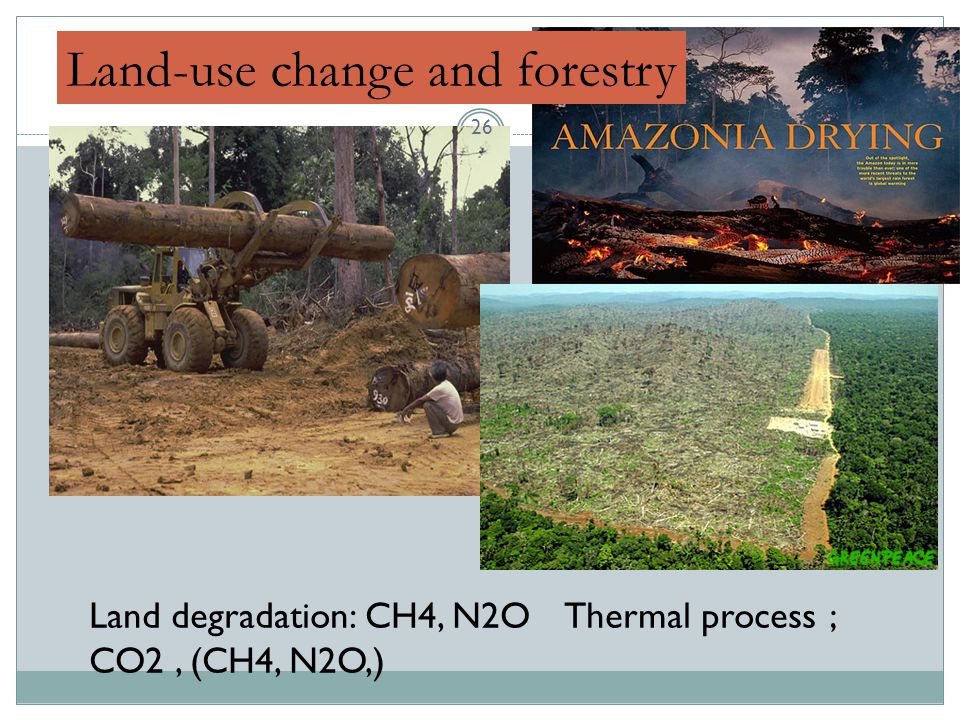 Land-use change and forestry