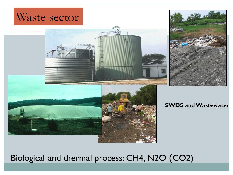 Waste sector Biological and thermal process: CH4, N2O (CO2)