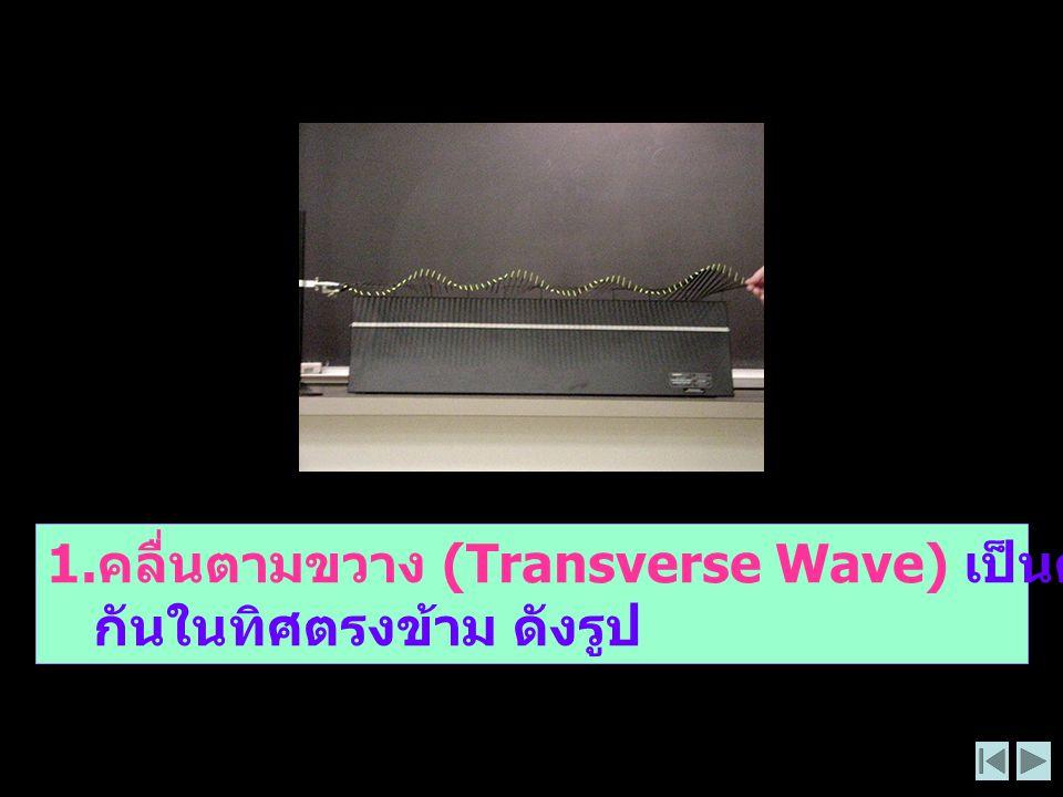 1.คลื่นตามขวาง (Transverse Wave) เป็นคลื่นที่ทำให้เกิดส่วนที่โค้งสลับ