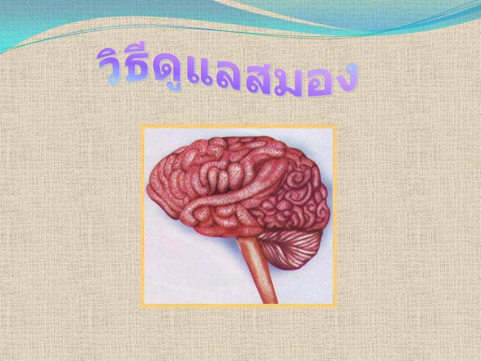 วิธีดูแลสมอง