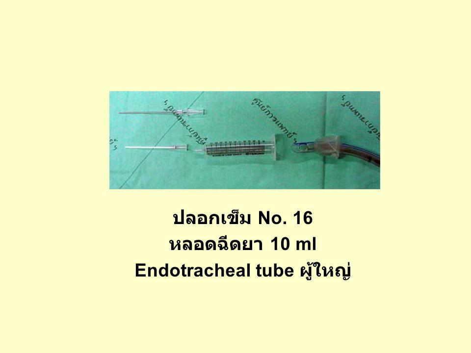 Endotracheal tube ผู้ใหญ่