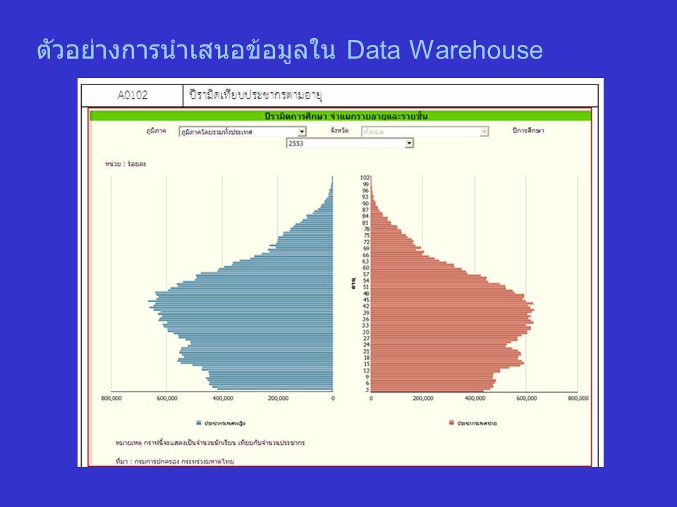 ตัวอย่างการนำเสนอข้อมูลใน Data Warehouse
