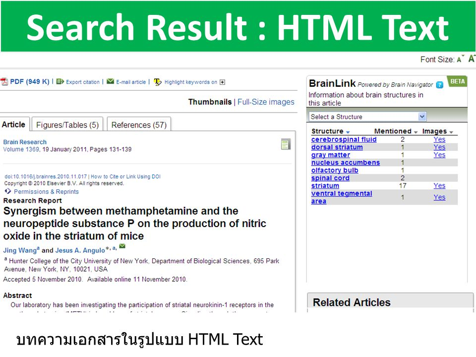 Search Result : HTML Text