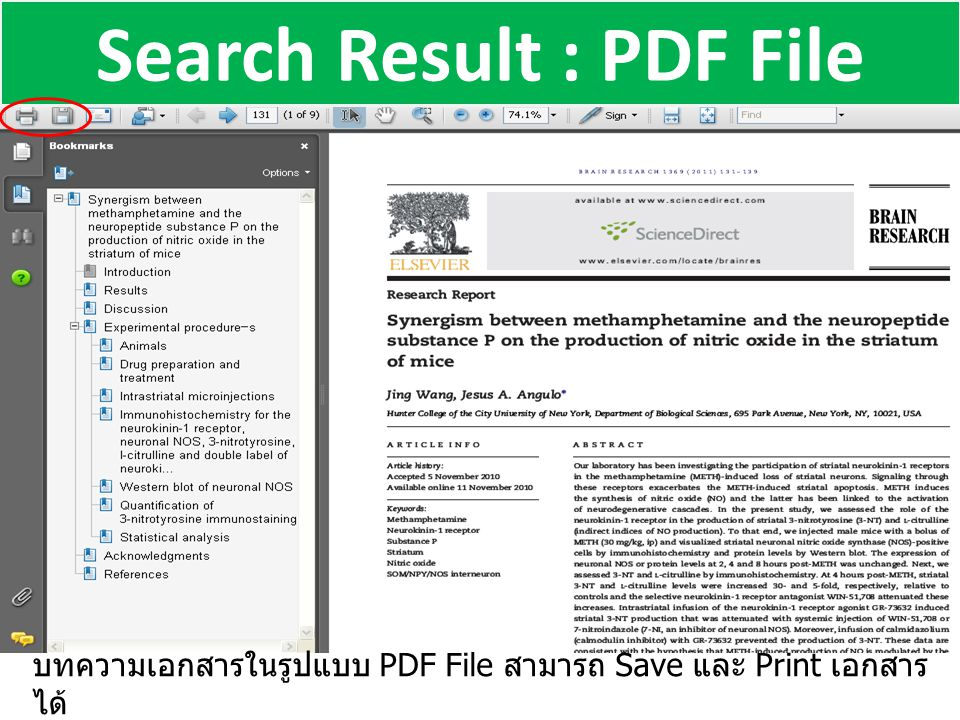 Search Result : PDF File