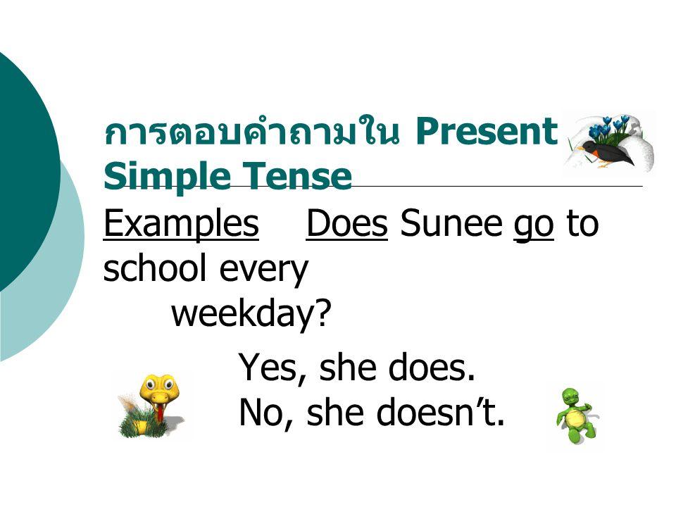 การตอบคำถามใน Present Simple Tense