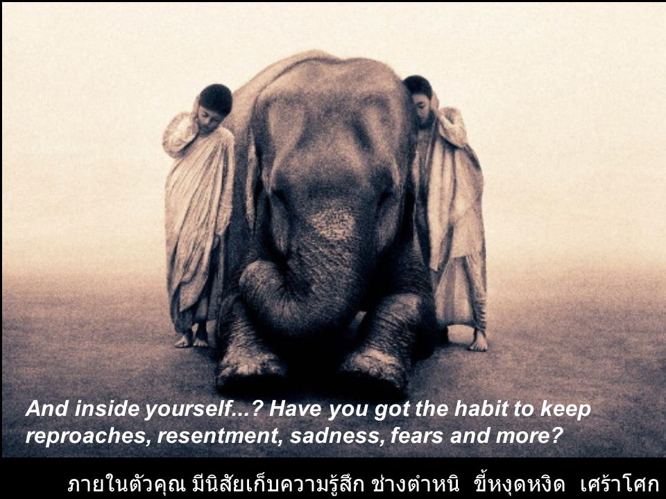 And inside yourself... Have you got the habit to keep reproaches, resentment, sadness, fears and more