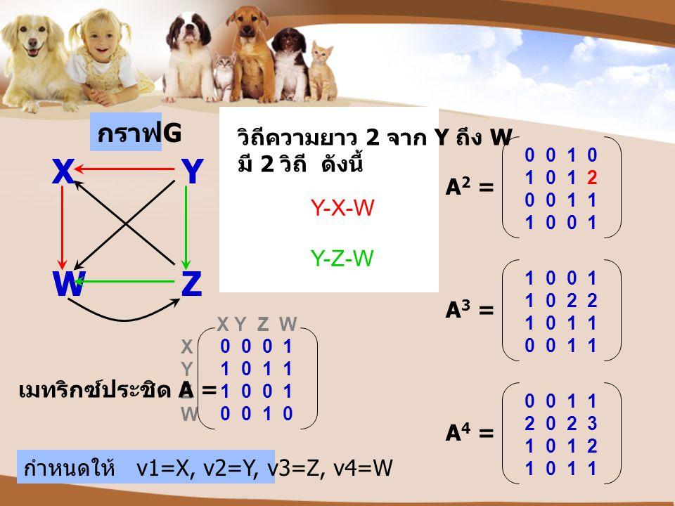 X Y W Z กราฟG วิถีความยาว 2 จาก Y ถึง W มี 2 วิถี ดังนี้ A2 = Y-X-W