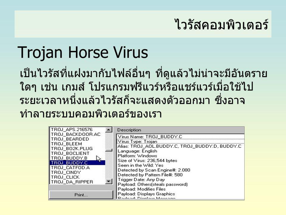 Trojan Horse Virus ไวรัสคอมพิวเตอร์
