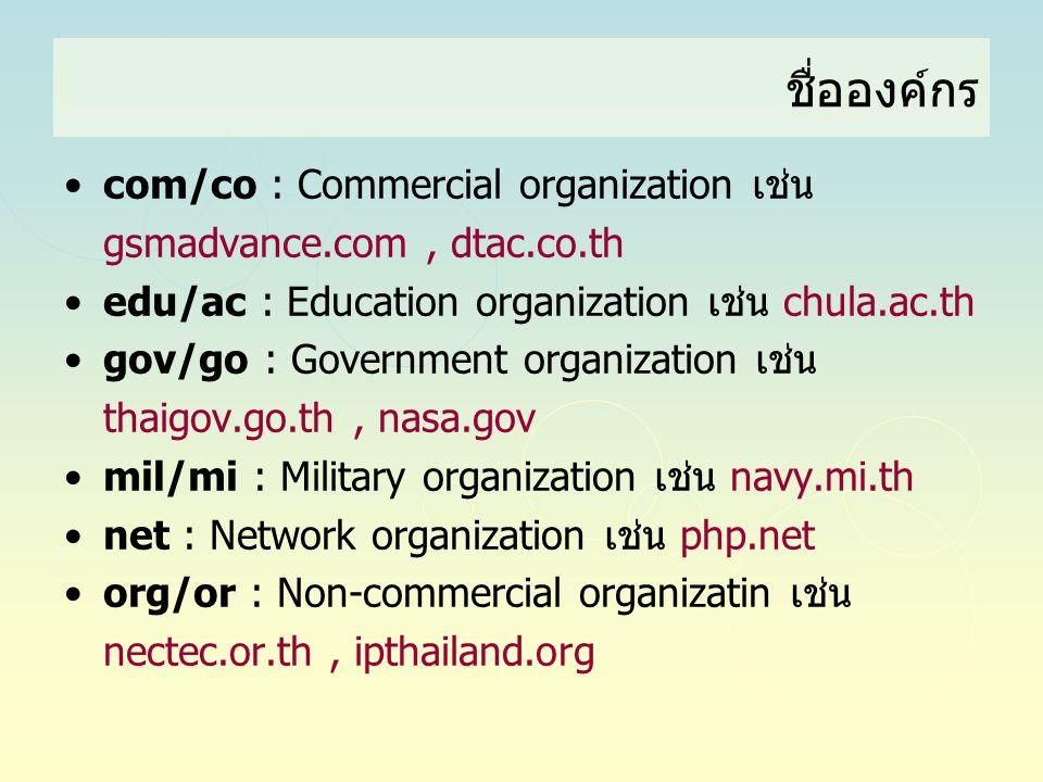 ชื่อองค์กร com/co : Commercial organization เช่น